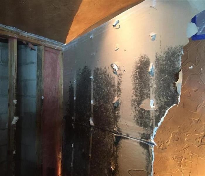 This bedroom had major mold issues Before